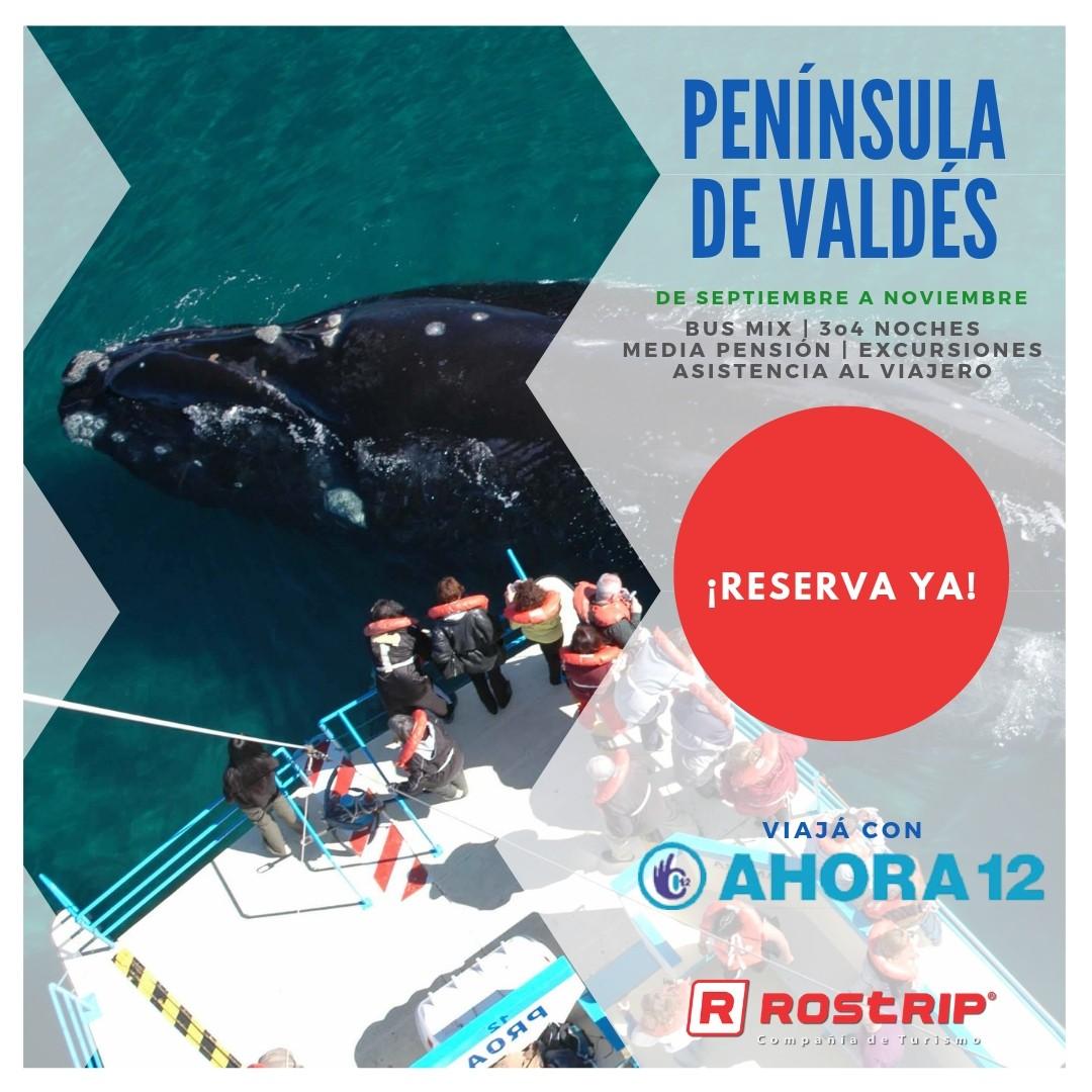 Peninsula de Valdes - Puerto Madryn - Avistaje de Ballenas - Rostrip
